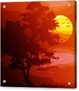 Golden Rays Of The Sun  Acrylic Print