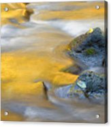 Golden Refuge Acrylic Print