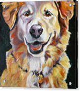 Golden Retriever Most Huggable Acrylic Print