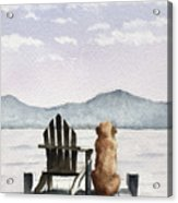 Golden Retriever On The Dock Acrylic Print