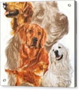 Golden Retriever W/ghost Acrylic Print