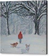 Golden Retriever Winter Walk Acrylic Print