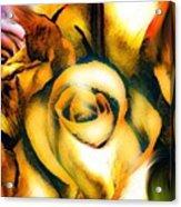 Golden Rose N Twilight Acrylic Print