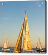Golden Sails Acrylic Print