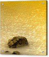 Golden Silence Acrylic Print