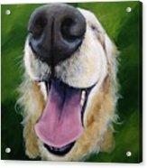 Golden Smile Acrylic Print