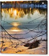 Golden Snow Acrylic Print