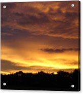 Golden Sunset 1 Acrylic Print