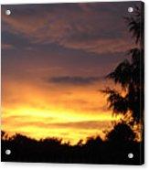 Golden Sunset 2 Acrylic Print