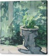 Golden Swan Garden Acrylic Print