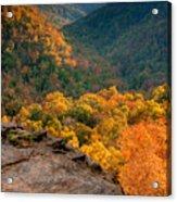 Golden Valleys Acrylic Print by Ryan Heffron