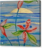 Golden Waikiki Sunset Acrylic Print