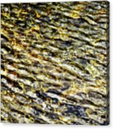 Golden Water On Mountain Lake Acrylic Print