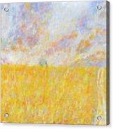 Golden Wheat Field Acrylic Print