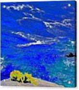 Golden Yarrow Rock Sea Point Lobos Acrylic Print