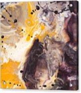 Golden Yellow And Purple Acrylic Print
