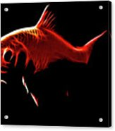 Goldfish 1 Acrylic Print by Tilly Williams