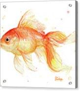 Goldfish Painting Watercolor Acrylic Print