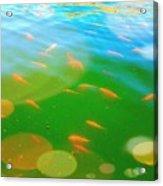 Goldfishes Acrylic Print