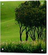 Golf Course Abstract Acrylic Print