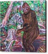 Goliath - The Bigfoot Of Ash Swamp Road Acrylic Print