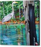 Gone Fishin Acrylic Print