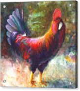 Gonzalez The Rooster Acrylic Print by Talya Johnson