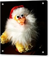 Good Chicken Acrylic Print