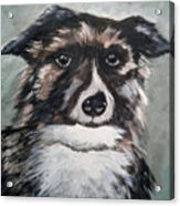 Good Dog By Christine Lites Acrylic Print