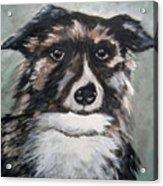 Good Dog By Christine Lites Acrylic Print