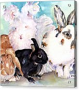 Good Hare Day Acrylic Print