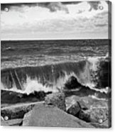Good Morning In Black And White Acrylic Print