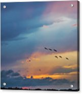Goodbye To The Day Acrylic Print