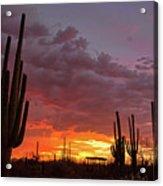 Goodnight Tucson Acrylic Print