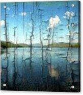Goose Pond Reflection Acrylic Print