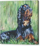 Gordon Setter In The Grass Acrylic Print