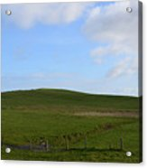 Gorgeous Rolling Hills And Fields On The Cliff's Of Moher Acrylic Print