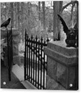 Surreal Gothic Gargoyle With Raven Black And White Gothic Gargoyles Gate Scene Acrylic Print