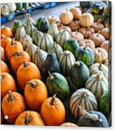 Gourds Galore Acrylic Print