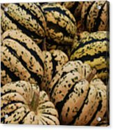Gourds In White And Green Acrylic Print by Jame Hayes