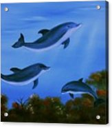 Graceful Dolphins At Play. Acrylic Print by Cynthia Adams