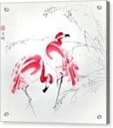 Graceful Pair Acrylic Print