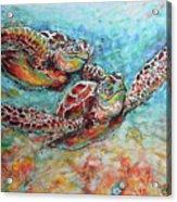 Sea Turtle Buddies Acrylic Print