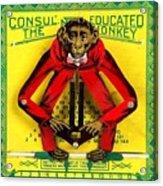 Graduation Monkey Acrylic Print