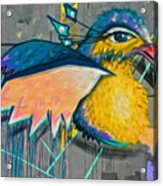 Graffiti Art Of A Colorful Bird Along Street IIn Hilly Valparaiso-chile Acrylic Print