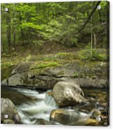 Grafton Notch Maine Acrylic Print