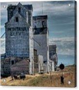 Grain Elevators, Wilsall Acrylic Print