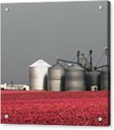 Grain Storage Infrared No1 Acrylic Print