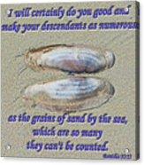 Grains Of Sand Acrylic Print