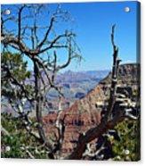 Grand Canyon 13 Acrylic Print